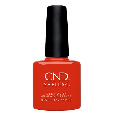 Hot or Knot, Shellac Nauti Nautical