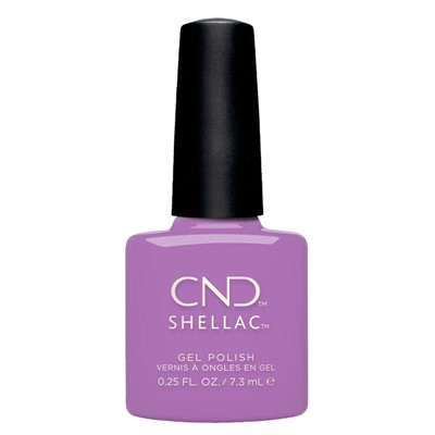 It's Now oar Never,Shellac Nauti Nautica
