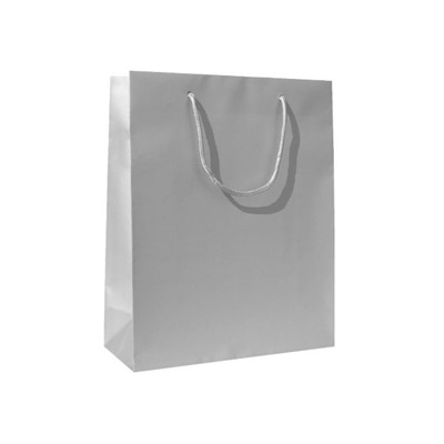 Paper Bag, paper, Silver finish*