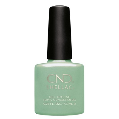 Mint Convertible, Shellac