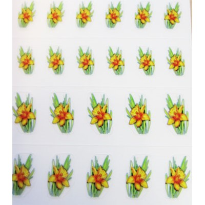 Decal Flower, Yellow Daffodil Flower*
